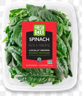 Spinach - Spinach Vegetarian Cuisine Spring Greens Chard Rapini PNG