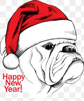 Vector Christmas Dog - White English Bulldog Cartoon Illustration PNG