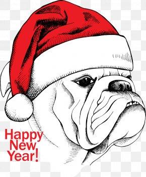 Vector Christmas Dog - White English Bulldog Cartoon Illustration PNG