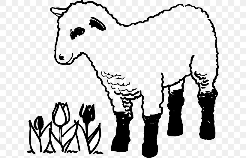 Sheep Colouring Pages Coloring Book Lamb And Mutton Goat Png 640x527px Watercolor Cartoon Flower Frame Heart