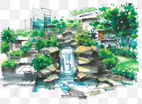 Tree - Marker Pen Landscape Architecture Garden PNG