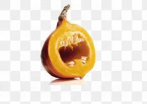 Pumpkin Creative Advertising - Advertising Agency Robert Bosch GmbH DDB Worldwide Advertising Campaign PNG