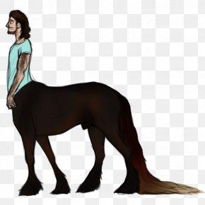 Dog - Dog Mustang Digital Art Friesian Horse PNG