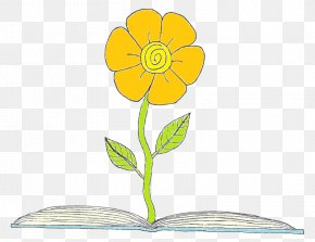 Kindergarten Writing Book Orange - Clip Art Floral Design Sunflower M Cut Flowers Plant Stem PNG