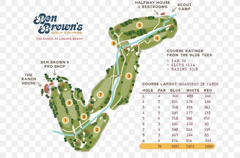 39+ Aliso creek golf course scorecard information