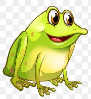 Frog - Frog Royalty-free Clip Art PNG