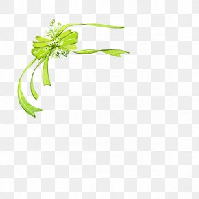 Fancy Bow - Shoelace Knot Download Ribbon PNG