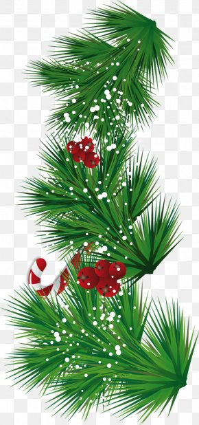 Pine Cone - Candy Cane Santa Claus Christmas Tree Clip Art PNG