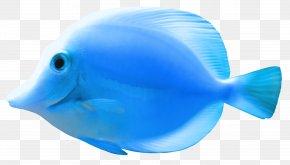 Fish 2 - FNaF World Bluefish Fishing PNG