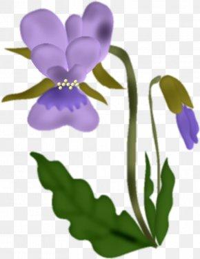 Flower - Flower Violet PNG
