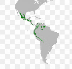 United States - Latin America United States South America Central America Map PNG