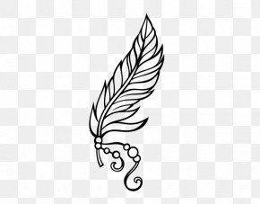 Feather - Drawing Feather Pen Coloring Book PNG