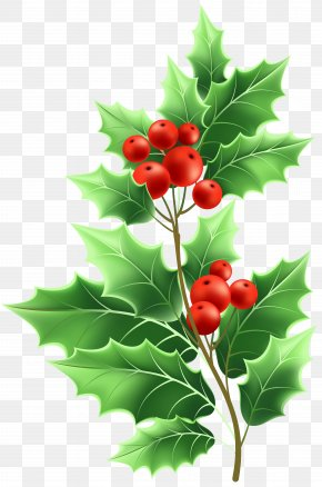 Christmas Mistletoe Transparent Clip Art - Image File Formats Lossless Compression PNG