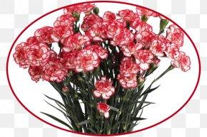 Flower - Dom Tsvetochnoy Mody Flower Bouquet Floral Design Garden Roses PNG