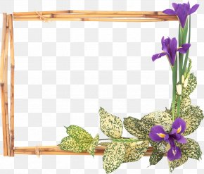 Flower Frame - Picture Frames Flower Window Stock Photography Clip Art PNG