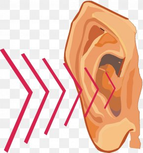 Cliparts Hearing Sound - Sound Vibration Hearing Clip Art PNG