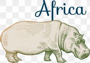 Vector Cartoon Hippo - Hippopotamus River Horse Cartoon PNG