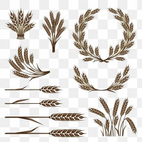 Rice - Wheat Icon PNG
