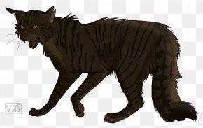 Cat - Cat Into The Wild Warriors Brokenstar Erin Hunter PNG