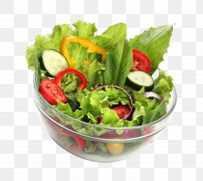 Vegetable Salad Bowl - Salad Vegetable Food Bowl Healthy Diet PNG