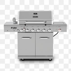 Portable Gas Grills - Barbecue Grilling Rotisserie Cooking Napoleon Grills PNG