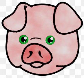 Pig Clip Art Free Content Vector Graphics PNG