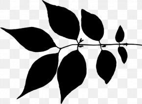 Twig Leaf Clip Art Plant Stem Flower PNG