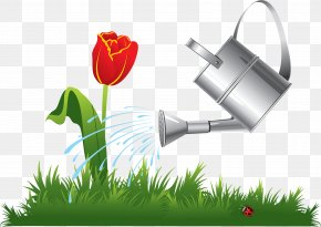 Bachelorette - Graphic Designer Logo PNG