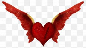 Heart Wing - Love Romance Heart PNG