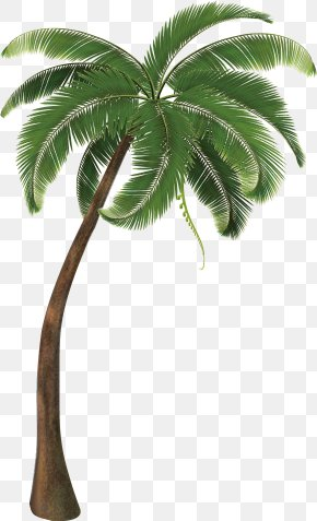 Coconut Tree Decorative Design Vector - Travel Pack Vacation Icon PNG