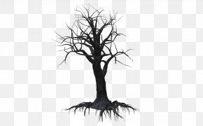 Creepy Tree - Tree Drawing Woody Plant Branch Clip Art PNG