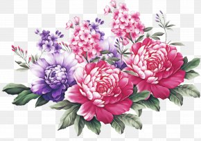 Floral Design Chinese Peony - Floral Design PNG