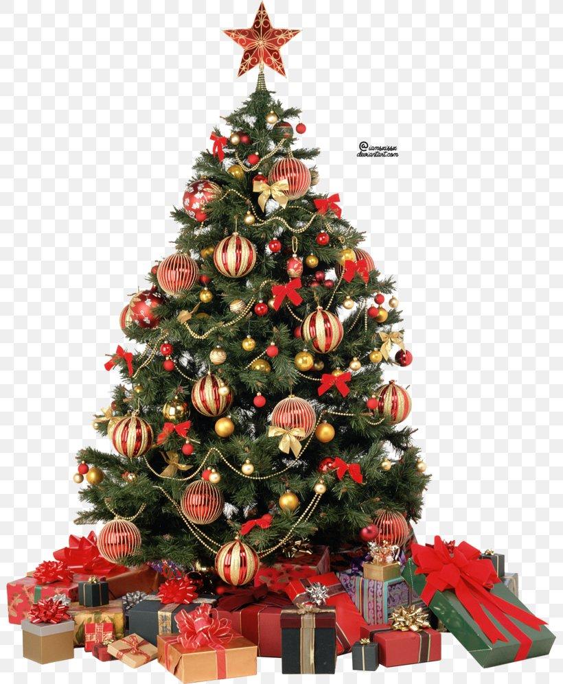 Christmas Tree Clip Art, PNG, 801x997px, Christmas Tree, Artificial Christmas Tree, Christmas, Christmas And Holiday Season, Christmas Decoration Download Free