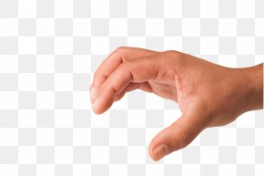 Hands Hand Image - Hand Clip Art PNG