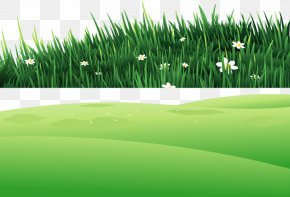 Grass On The Hill - Clip Art PNG