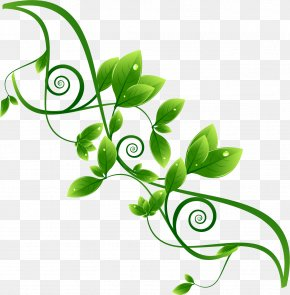 Beautifully Green Theme Label Vector Material - Environmental Protection Green PNG