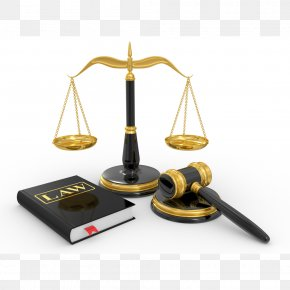 Lawyer - Lawyer Law Firm Bankruptcy Tort PNG