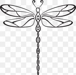 Black Dragonfly Cliparts - Dragonfly Free Content Stock Photography Clip Art PNG