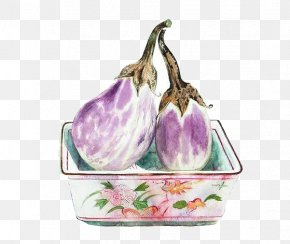 Eggplant Picture Material - Watercolor Painting Eggplant Art PNG