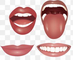 Mouth Tongue Teeth - Mouth Tongue Tooth Lip PNG