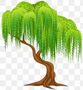 Willow Tree Transparent Clip Art Image - Weeping Willow Tree Wall Decal Clip Art PNG