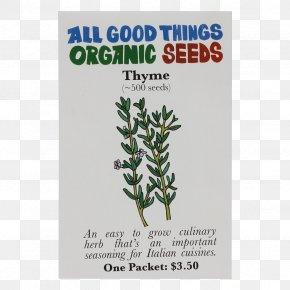 Herb Garden - Organic Certification Seed Herb Organic Food Basil PNG