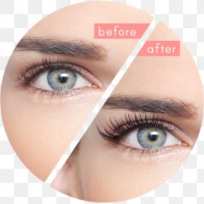 Eyelashes - Eyelash Extensions Artificial Hair Integrations Beauty Parlour PNG