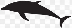 Dolphin Silhouette Clip Art Image - Dolphin Silhouette Clip Art PNG