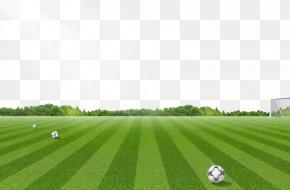 Football Field Pattern - Football Pitch Lawn PNG