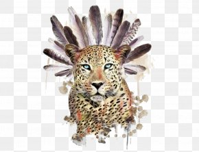 Feather And Cheetah - Raccoon Tiger Owl Symbol Illustration PNG