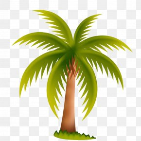 Spread Coconut Leaves Picture Material - Arecaceae Date Palm Tree Clip Art PNG