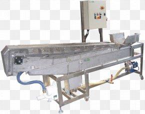 Apple - Machine Conveyor Belt Fruit Conveyor System Food PNG