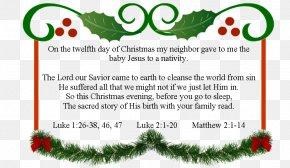 Christmas Tree - Christmas Tree Homework Santa Claus Christmas And Holiday Season PNG
