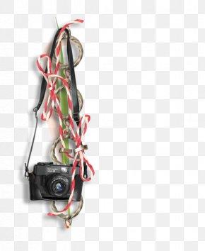 Camera Camera - Video Camera PNG